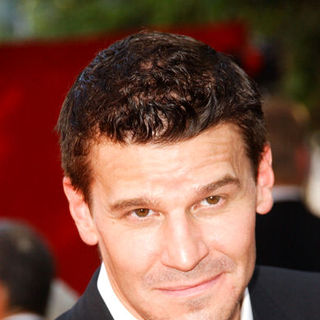 David Boreanaz in The 61st Annual Primetime Emmy Awards - Arrivals