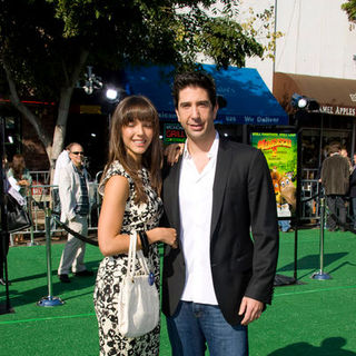 "David Schwimmer in ""Madagascar: Escape 2 Africa"" Los Angeles Premiere - Arrivals"