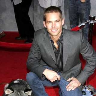 Paul Walker in Eight Below World Premiere