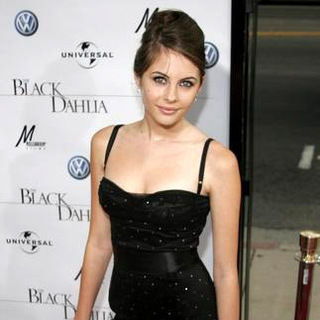 Willa Holland in The Black Dahlia Los Angeles Premiere