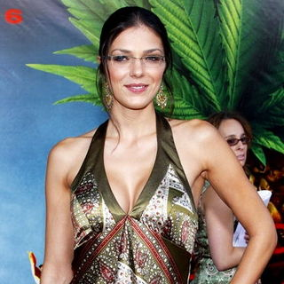 "Adrianne Curry in ""Pineapple Express"" Los Angeles Premiere - Arrivals"