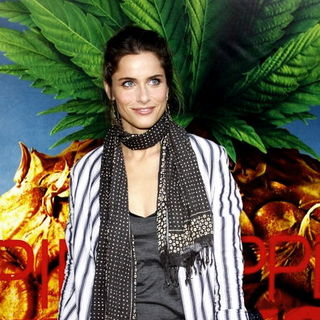 "Amanda Peet in ""Pineapple Express"" Los Angeles Premiere - Arrivals"