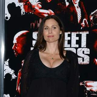 "Minnie Driver in ""Street Kings"" Hollywood Premiere - Arrivals"