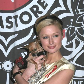 Paris Hilton - Paris Hilton Signs Copies of her Book Your Heiress Diary: Confess it all to Me at Virgin Megastore