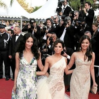 2008 Cannes Film Festival -