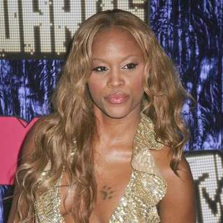 Eve in 2007 MTV Video Music Awards - Red Carpet - PRN-007498