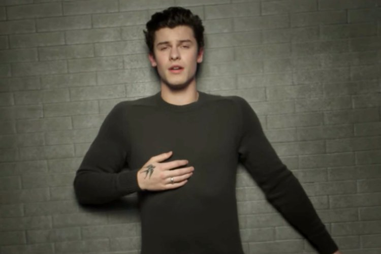 Shawn Mendes Braves Brutal Storm in Emotional Music Video for 'In My Blood'