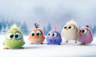 See Some Cute Hatchlings in 'Angry Birds' New Video