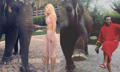 Iggy Azalea and French Montana Under Fire for Posing With Elephant at His Backyard