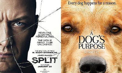 'Split' Tops Box Office Again, 'A Dog's Purpose' Has Solid Debut Against All Odds