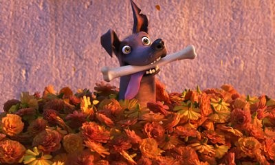 New Short Film for 'Coco' Features Cute Dog and Magical Bone