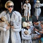 Lady GaGa Confuses PETA With 'Turncoat' Message