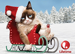 Grumpy Cat Gets Her Own Holiday Movie on Lifetime