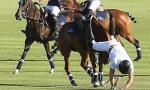 Ouch! Prince Harry Falls off His Horse - Twice