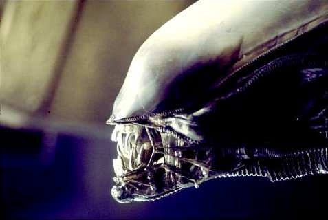 'Alien' Prequel Gets Heavenly Title, Release Date Not Pushed Back a Year