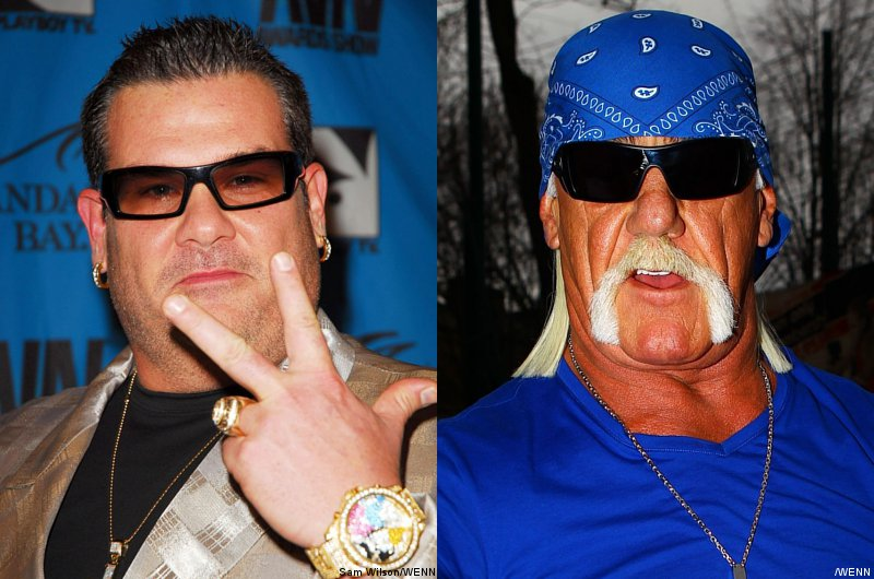 Bubba Reacts to Sex Tape Lawsuit, Calls Hulk Hogan 'Hypocritical Fraud'