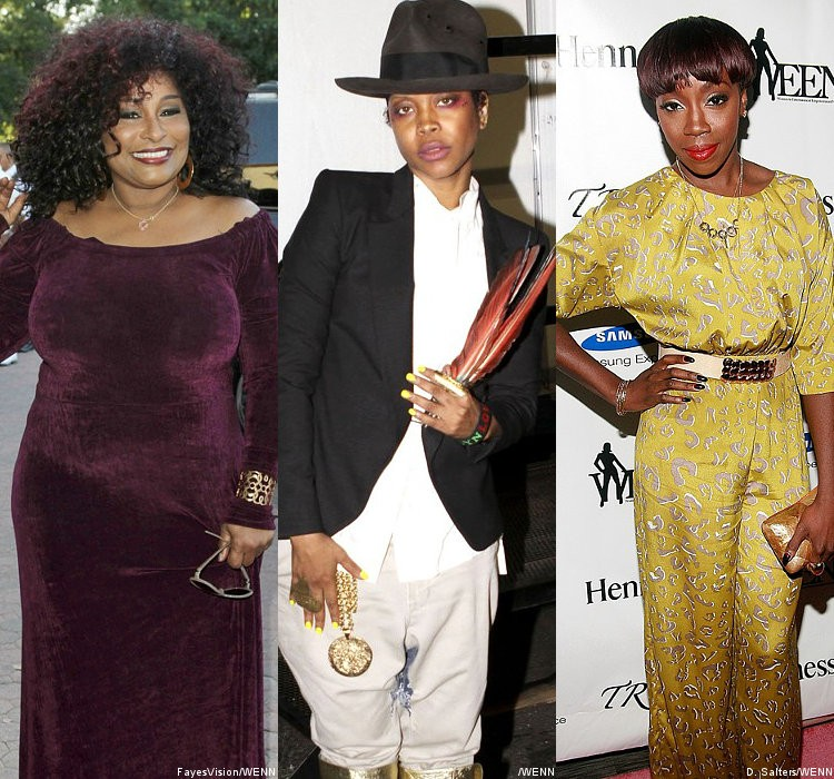 Chaka Khan, Erykah Badu, Estelle and Some Boys Join 2011 'VH1 Divas'
