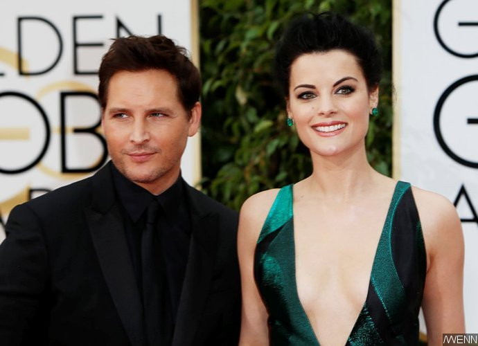 Jaimie Alexander and Peter Facinelli Call Off Engagement, Blame Busy Schedules