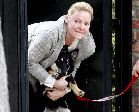 Katherine Heigl Spotted Stepping Out Without Makeup
