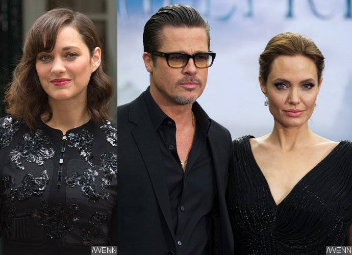 Marion Cotillard 'Absolutely Devastated' by Allegations She Caused Brangelina Divorce