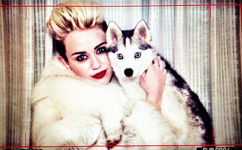 Miley Cyrus Shares Images From 'We Can't Stop' Video