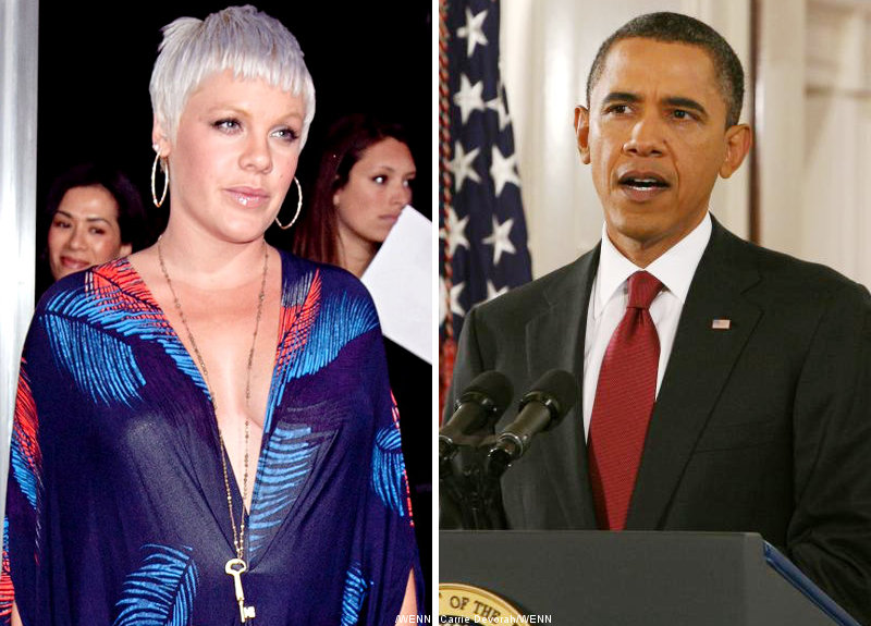 Pink Urge Obama to Enforce New Animal Protection Laws