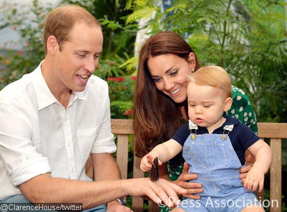 Prince George's New Photos at 'Sensational Butterflies' Released to Mark First Birthday