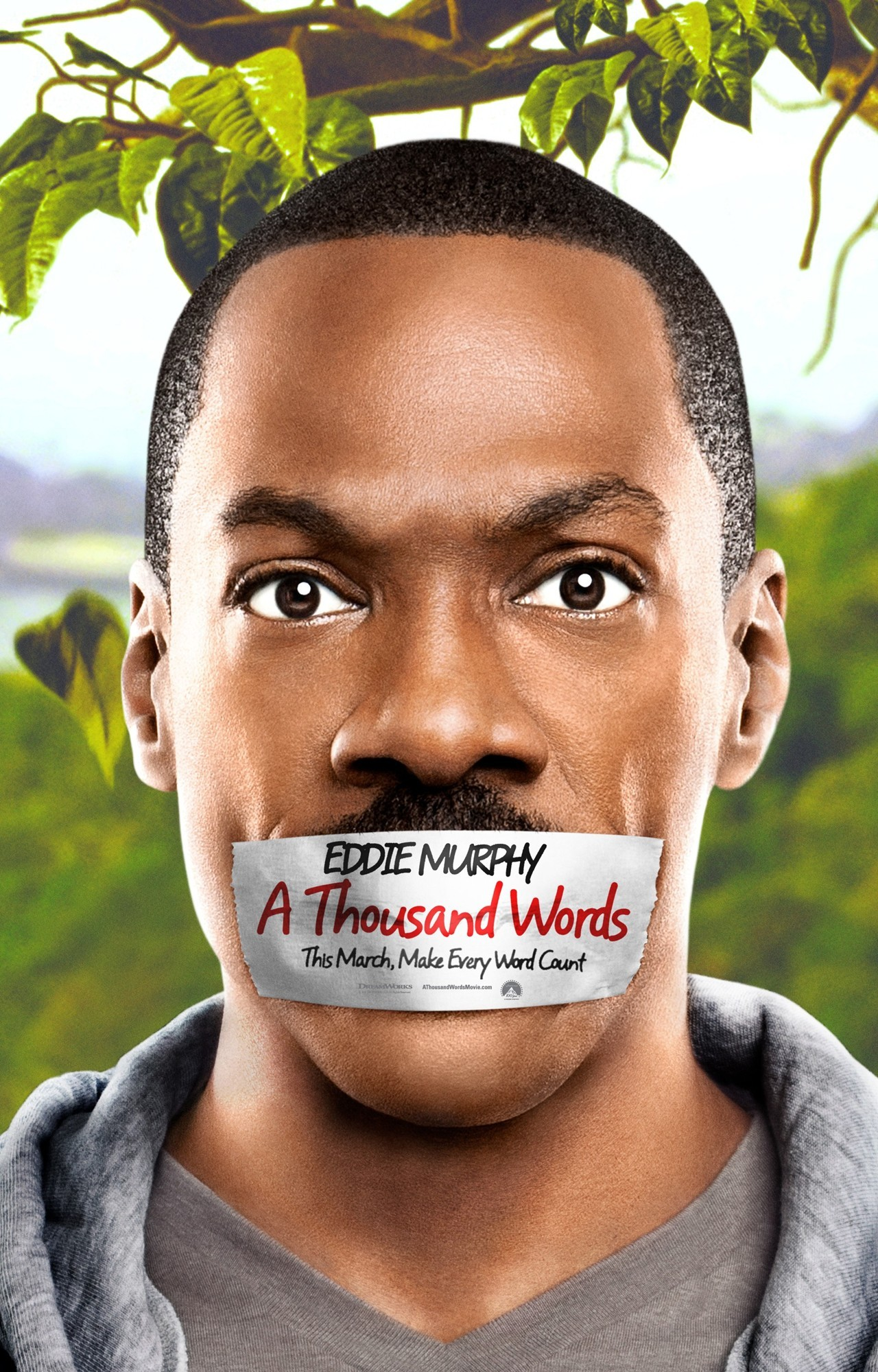 A Thousand Words - (2012) DVDRip XViD-FTW