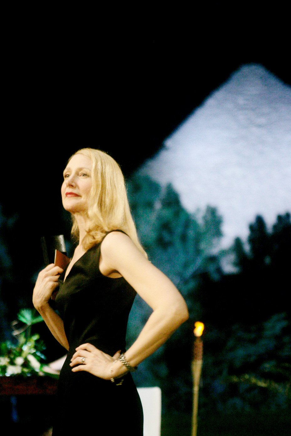 Patricia Clarkson stars as Juliette Grant in IFC Films' Cairo Time (2010)