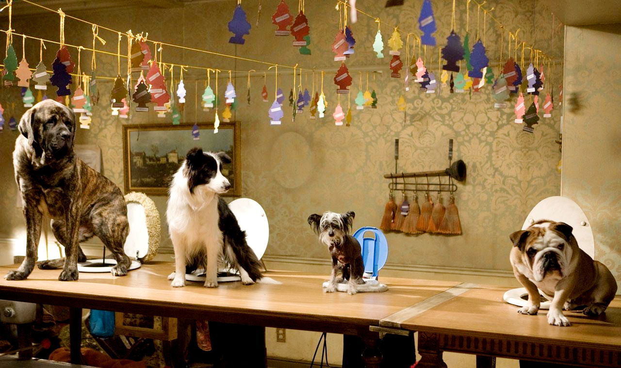 A scene from DreamWorks' Hotel for Dogs (2009)