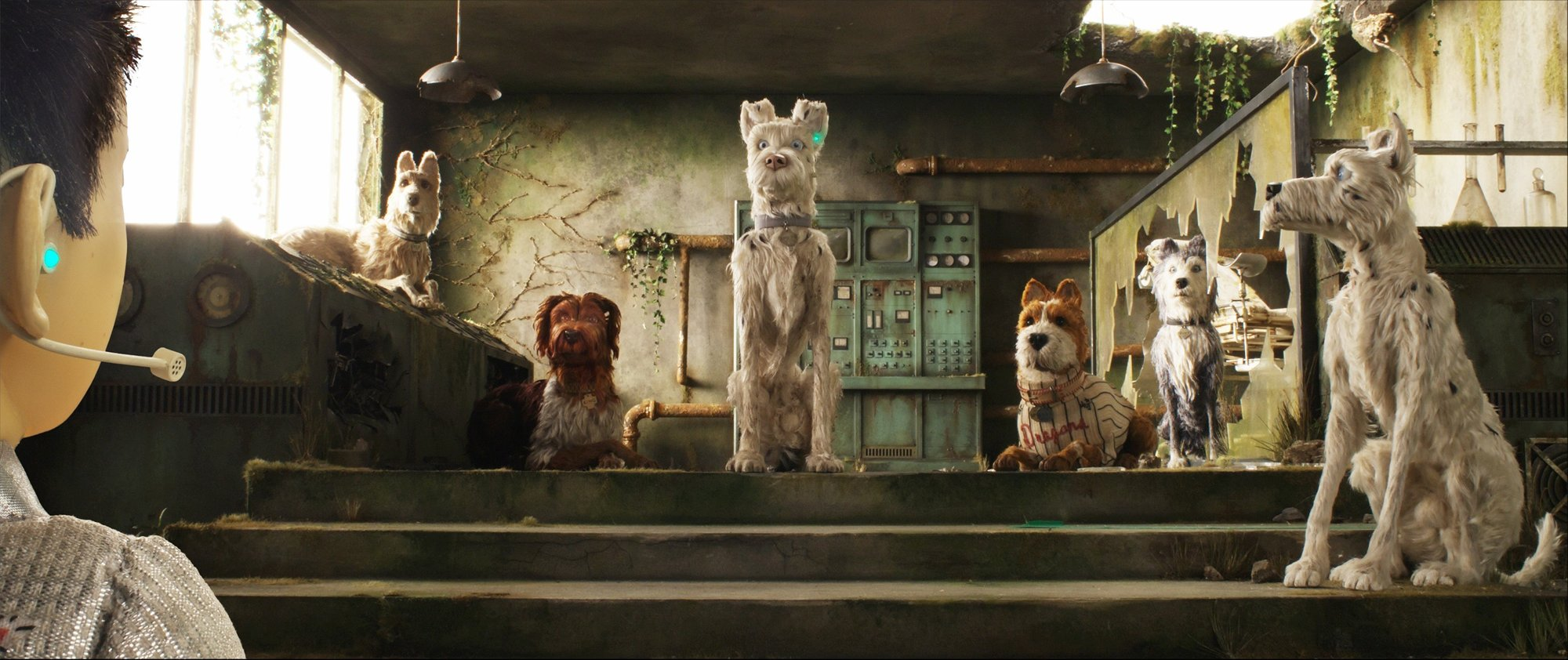 Rex, King, Boss and Duke from Fox Searchlight Pictures' Isle of Dogs (2018)