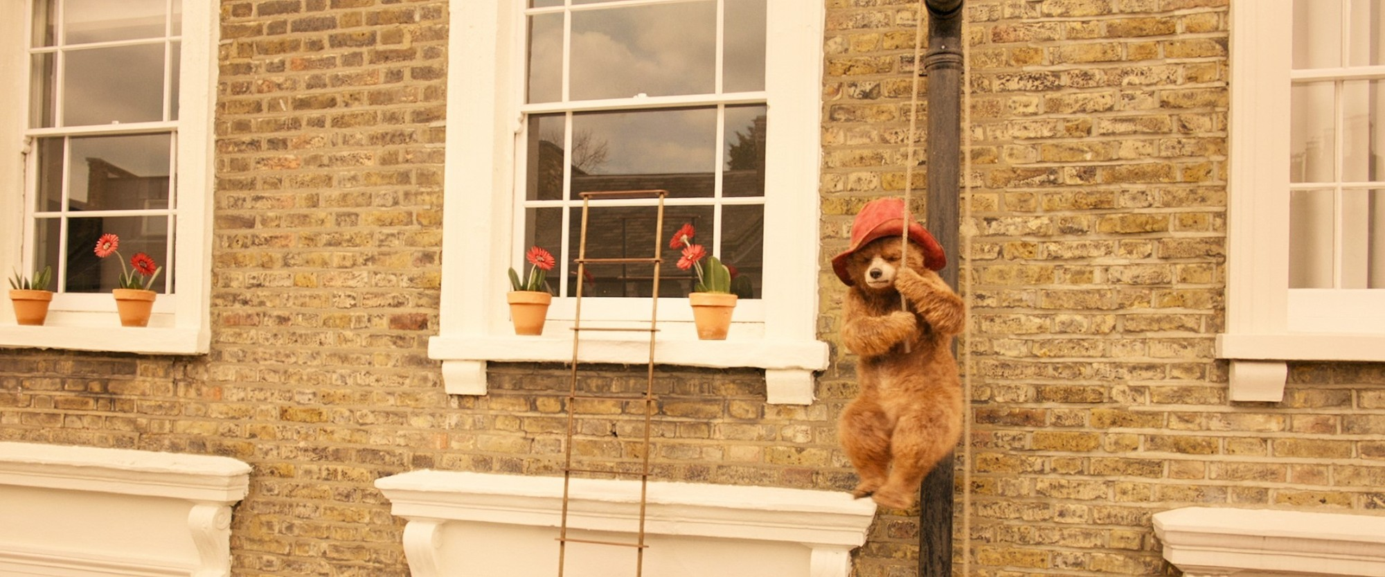 Paddington from Warner Bros. Pictures' Paddington 2 (2018)