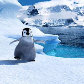 Happy Feet Picture 1