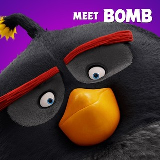 Angry Birds Picture 9