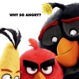 Angry Birds Picture 14
