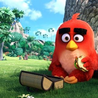 Angry Birds Picture 3