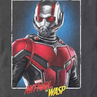 Ant-Man and the Wasp Picture 13