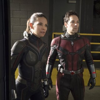 Ant-Man and the Wasp Picture 9