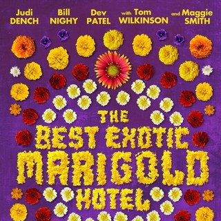 The Best Exotic Marigold Hotel Picture 4