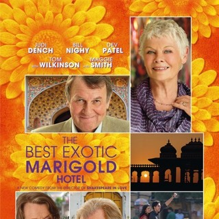 The Best Exotic Marigold Hotel Picture 6