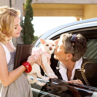 Beverly Hills Chihuahua Picture 2