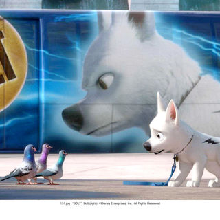 Bolt Picture 23