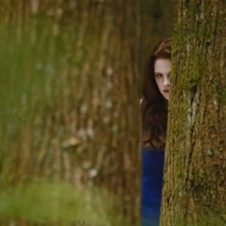 The Twilight Saga's Breaking Dawn Part II Picture 60