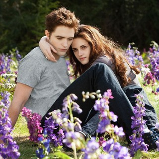 The Twilight Saga's Breaking Dawn Part II Picture 63
