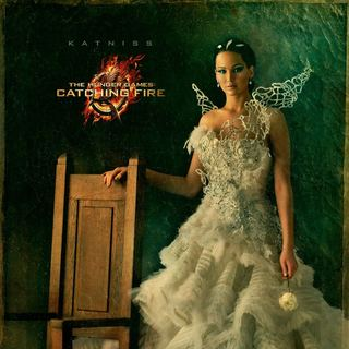 The Hunger Games: Catching Fire Picture 11