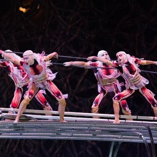 Cirque du Soleil: Worlds Away Picture 17
