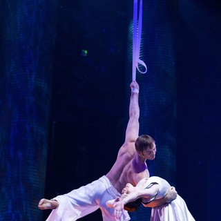 Cirque du Soleil: Worlds Away Picture 7