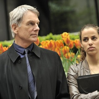Mark Harmon and Athena Karkanis stars as Marcy in USA Network's John Sandford's Certain Prey (2011)