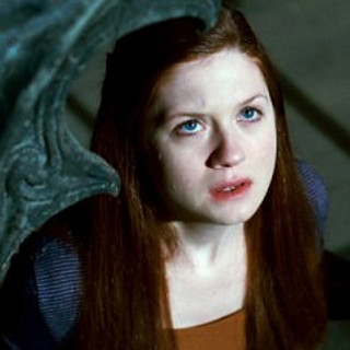 Harry Potter and the Deathly Hallows: Part II Picture 40