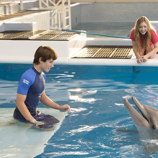 Dolphin Tale 2 photo